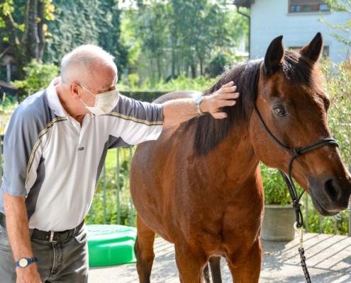 Priya Ender mit Pferden im Haus Koblach